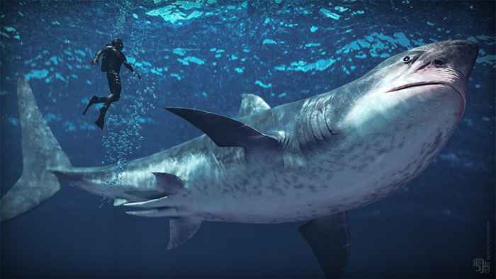tiburón Carcharocles megalodon