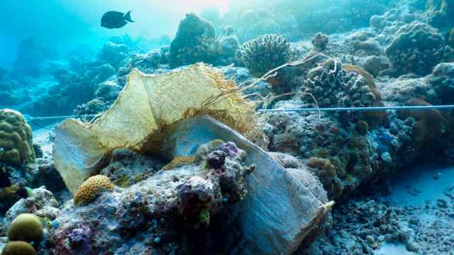 basura plástica en un arrecife de coral