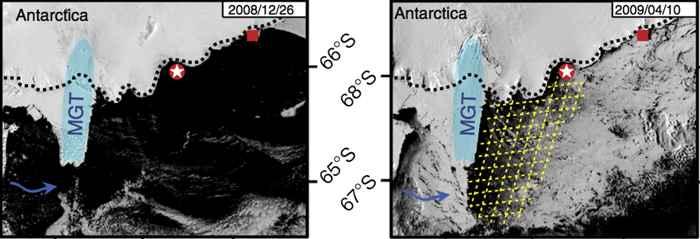 lengua del glaciar Mertz