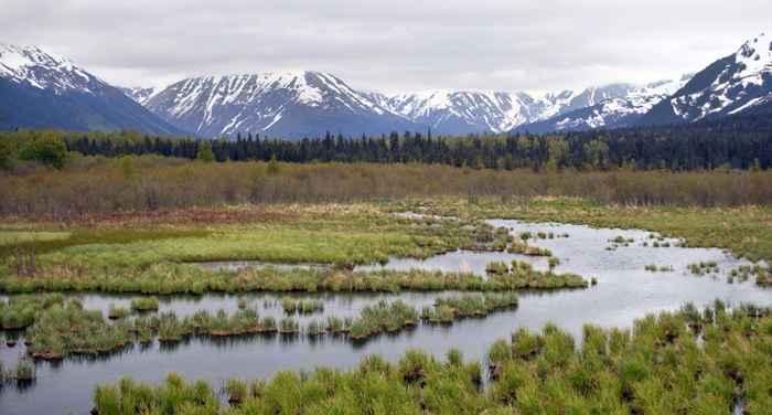 permafrost de Alaska