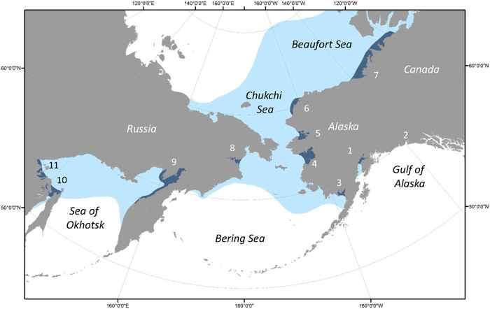 distribución de la ballena beluga
