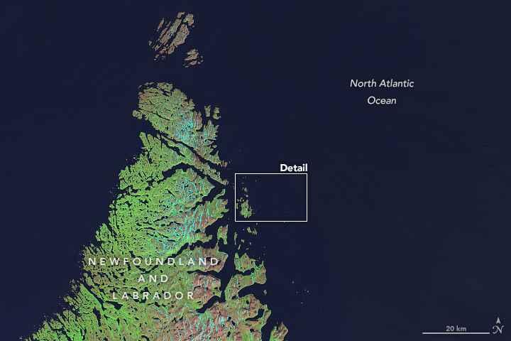 isla Landsat, Canadá - detalle