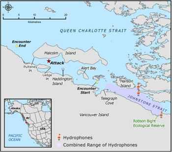 mapa del ataque de orcas