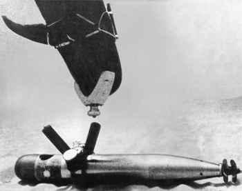 delfín desactiva un torpedo