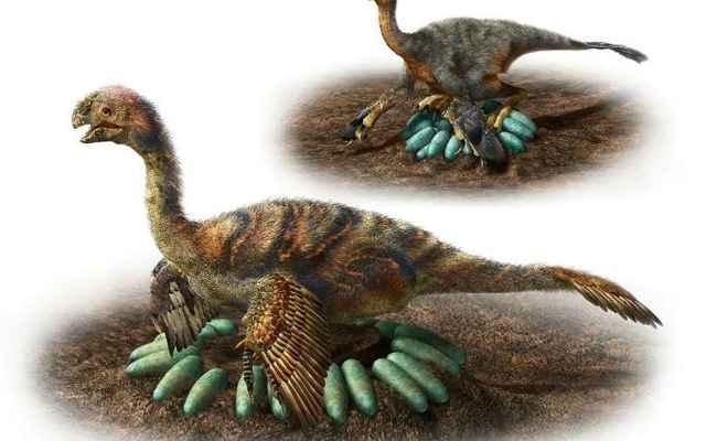 incubación de dinosaurios aviares