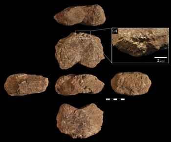 herramientas de piedras usadas por los macacos