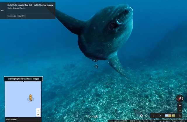 Google Street View para el Día Mundial de los Océanos