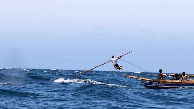 arponeo de una ballena en Lamalera