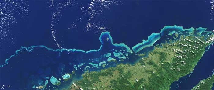 arrecife de coral Vanua Levu, Fiji