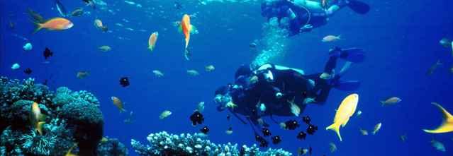 buzos en el Parque Natural de los Arrecifes de Tubbataha, Filipinas
