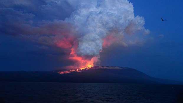 erupción del volcán Wolf, Galápagos