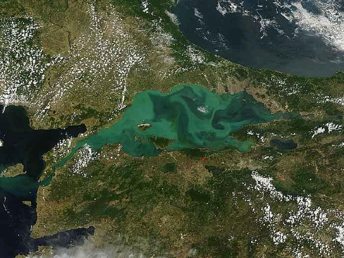 floración de diatomeas en el Mar de Mármara, 25 mayo