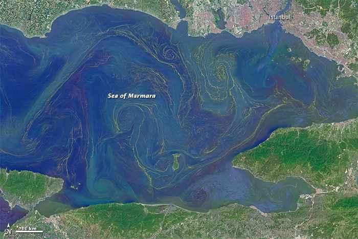 floración de diatomeas en el Mar de Mármara