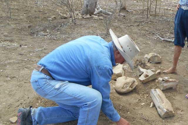 Robert Hacon con los huesos del kronosaurus