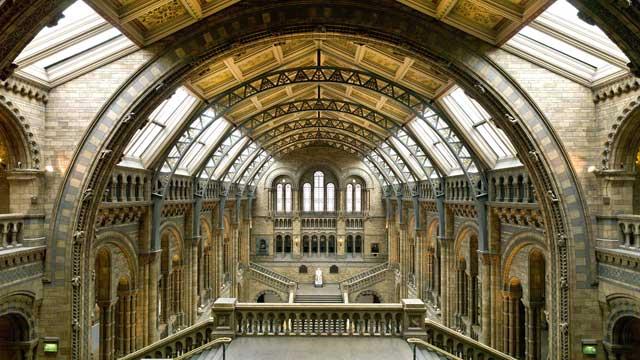 Museo de Historia Natural de Londres (Natural History Museum)