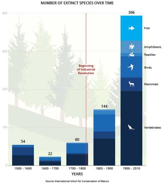 número especies extintas desde 1500