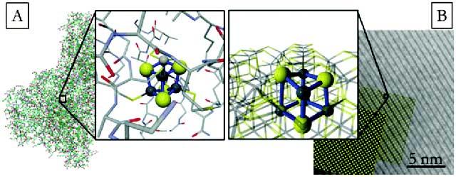 reacción química en un respiradero hidrotermal