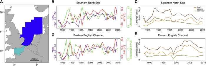 calentamiento en dos ecosistemas marinos