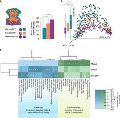 diferencias anatómicas en el microbioma del coral