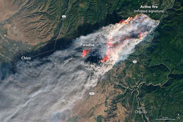 incendio forestal Camp, California
