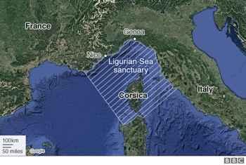 Mar de Lliguria