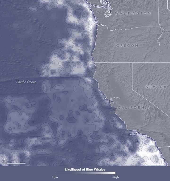 variables ambientales para la ballena azul en septiembre