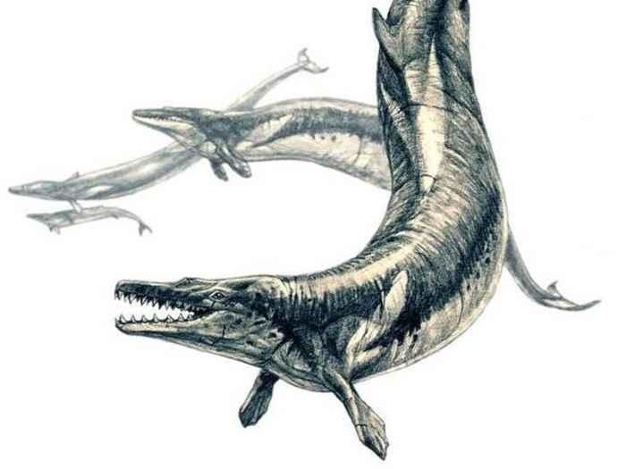 Basilosaurus isis ataca sus presas