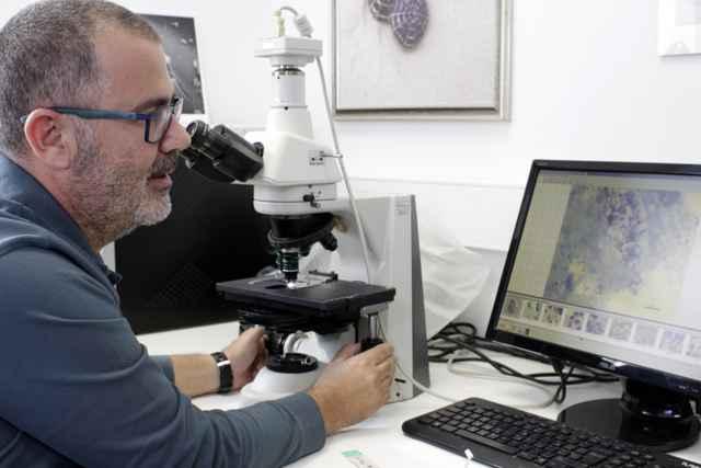 Katharios observa el tejido de una nacra