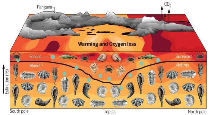 animales marinos extintos en el Pérmico-Triásico
