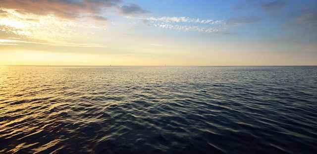 bacteria océano