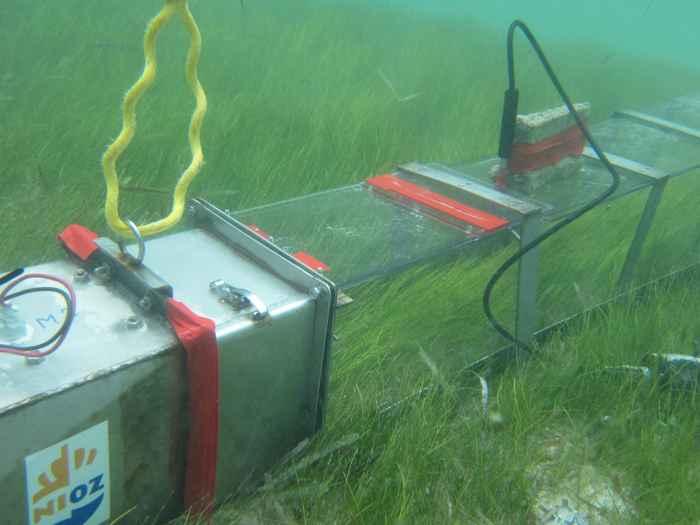 canal para el experimento de praderas marinas