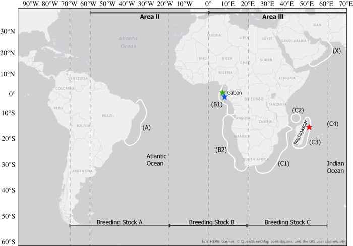 poblaciones de ballenas jorobadas en el sur de África