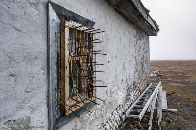 ventana con pinchos para oso polar