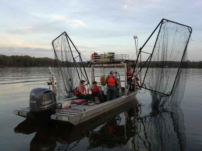bote para pesca eléctrica de carpa asiática