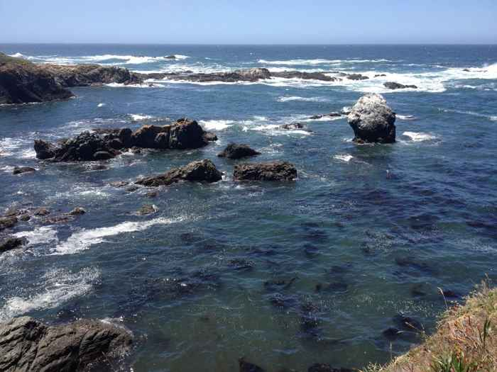 salud del océano