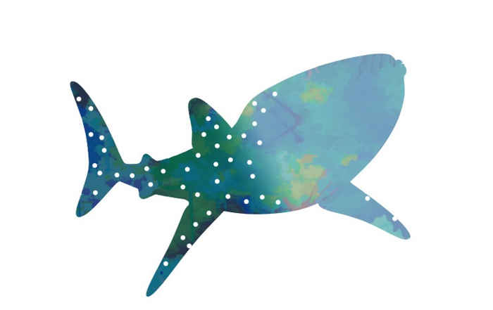 silueta de tiburón ballena