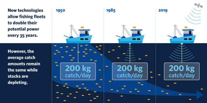 capacidad de pesca por generación
