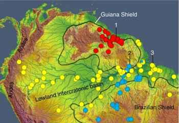 distribución de anguilas eléctricas en el Amazonas