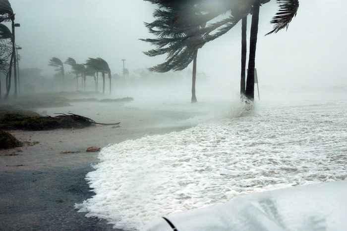 vientos y oleaje en la costa