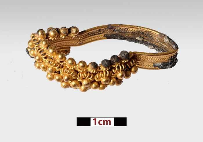 anillo de oro del Mentor