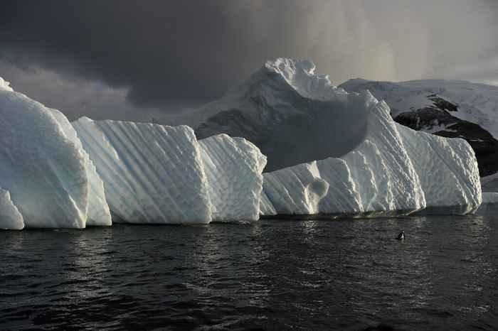áreas marinas protegidas en la Antártida