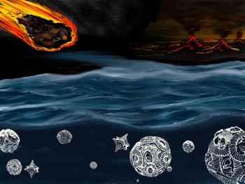 asteroide y foraminíferos