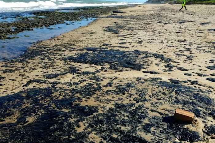 manchas de petróleo en una playa de Brasil