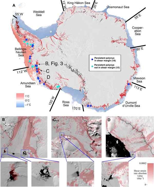 mapa de polinias persistentes en la Antártida