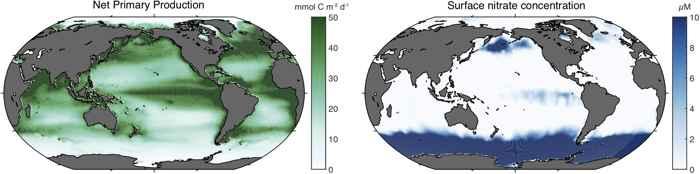 producción primaria neta de nitrato en el océano