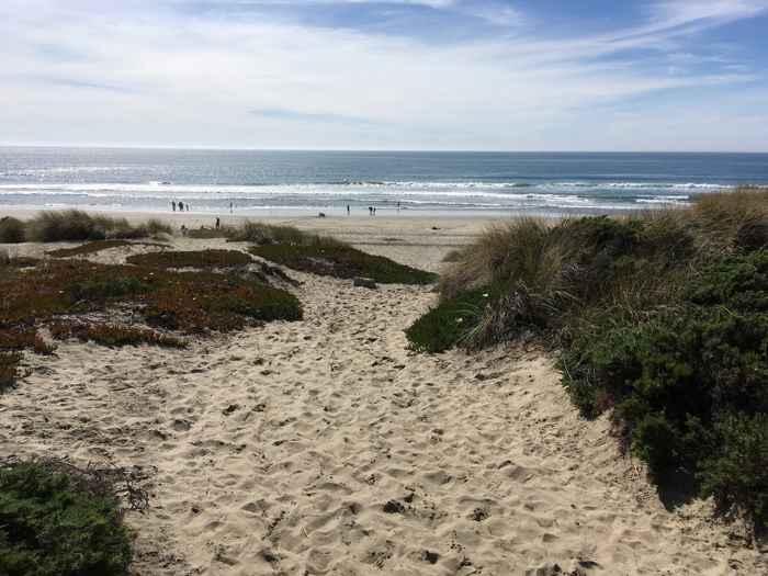 línea de costa en la Bahia de Monterey