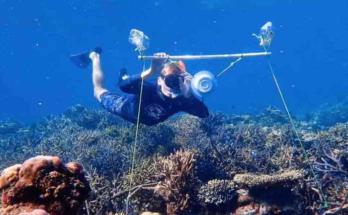 colocación de unos altavoces en el arrecife