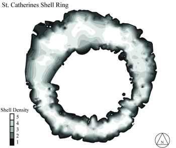 anillo de antiguas ostras
