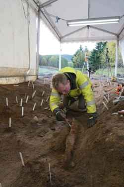 excavación tumba vikinga