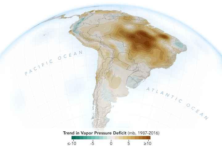 humedad del aire en el Amazonas